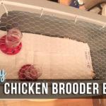 easy-diy-chicken-brooder-box-1080x735.jpg