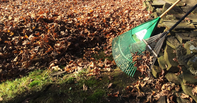 Fall Clean-Up on the Farm