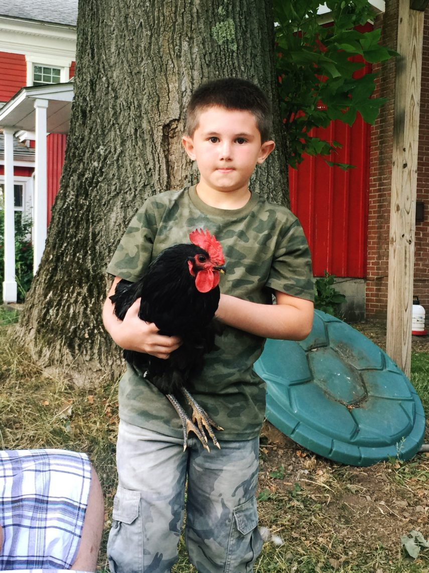 Ben and Ravioli the rooster | Little Red Farmstead