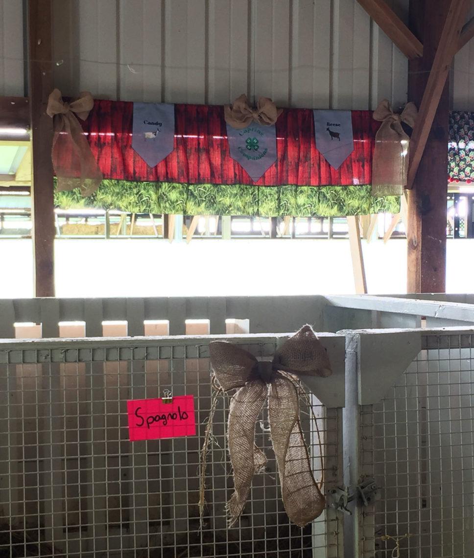 2016-albion-fair-stall