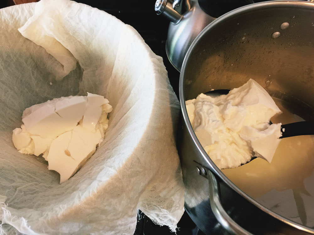 Scooping cheese curds out of the pot into butter muslin | Little Red Farmstead