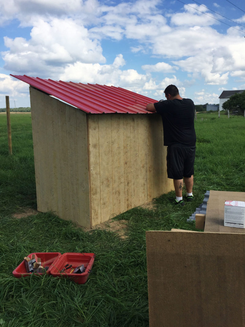 Adding the roof to the buck barn