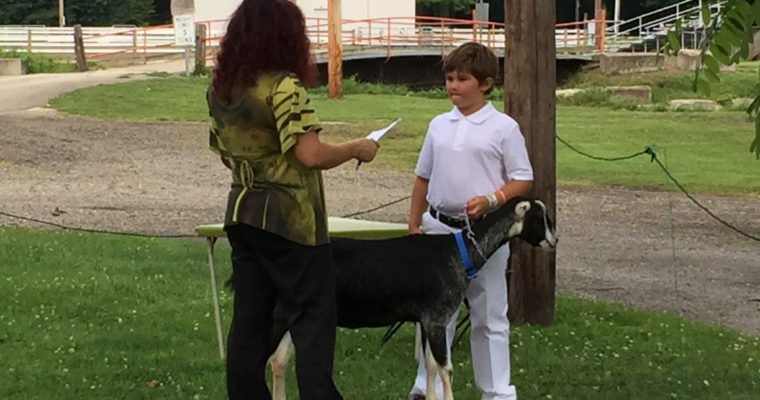 4-H Roundup and Counting Down to Fair Season